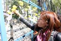 La activista mexicana Elvira Arellano coloca un papel con demandas en favor de los migrantes frente a la embajada de Estados Unidos, en Paseo de la Reforma
