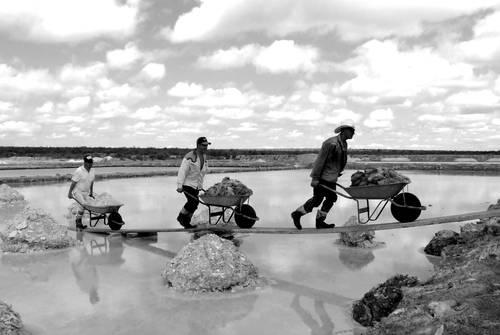 Trabajadores extraen sal de grano de una laguna salinera en San Luis