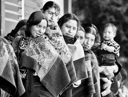 La consulta indígena es un derecho, no es concesión del Estado: Martínez Veloz