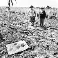 La agroindustria alteró la comunidad en San Isidro