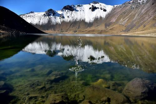 Limitado cumplimiento de las metas de conservación de la biodiversidad