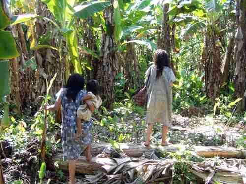 Indígenas en la selva amazónica, con corazones más sanos del mundo