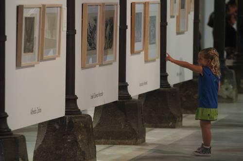 Se inaugura con éxito la exposición que muestra la pasión de Toledo por el arte