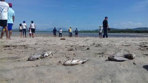 Desfogues de la refinería de Salina Cruz contaminan playa