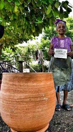 La iniciativa Adoptaunhorno apoya a ''las totoperas'' damnificadas por los temblores