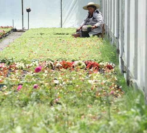 Denuncian guerra sucia contra asambleas de pueblos originarios en Xochimilco