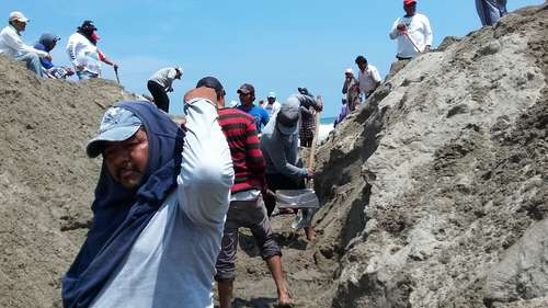 Futuro incierto de 14 mil pescadores en Oaxaca por deterioro de bocabarra<br>