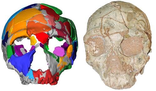 El Homo sapiens no africano más antiguo era griego, revela nueva investigación