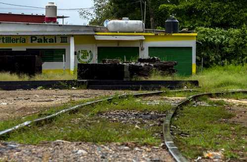 """""""Apetito de inversionistas"""" por el Tren Maya: Fonatur"""