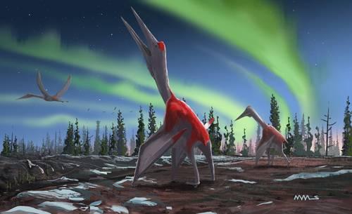 Identifican en Canadá a uno de los animales voladores más grandes de la prehistoria