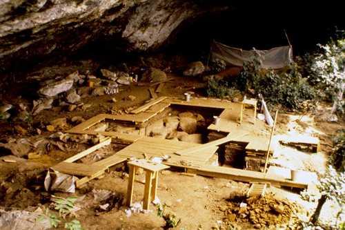 Humanos descienden de al menos cuatro linajes ancestrales de África