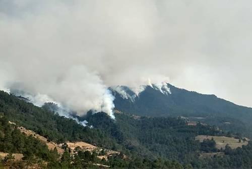 <br>Fuera de control, quemas forestales en el Edomex, Oaxaca y Puebla