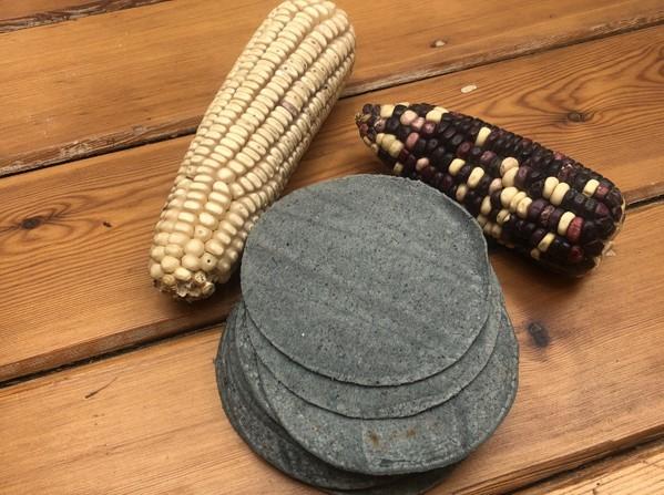 Comercializadoras de maíz hacen su agosto durante la pandemia