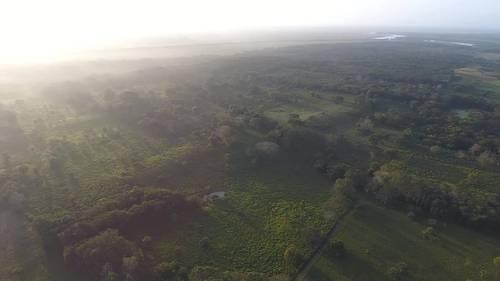 Tabasco: hallan plataforma de 1.5 km de largo y 3 mil años de antigüedad