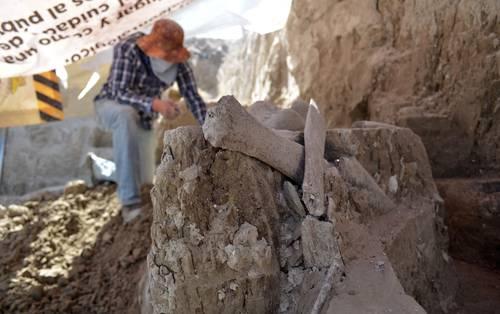 Recreará el INAH en Tultepec cómo vivían los mamuts hace 10 mil años