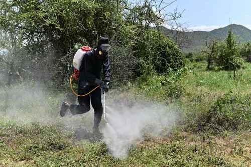 Los plaguicidas más usados en México, prohibidos en 34 países