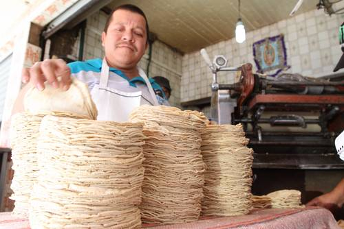Fundamental, promover la cultura y el consumo de maíz y tortilla: especialista