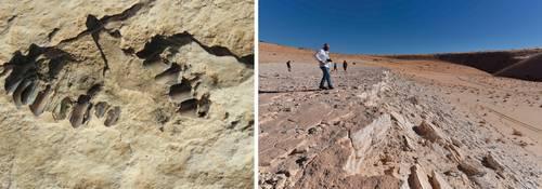 Huellas de hace unos 120 mil años develan ruta tomada por humanos al salir de África