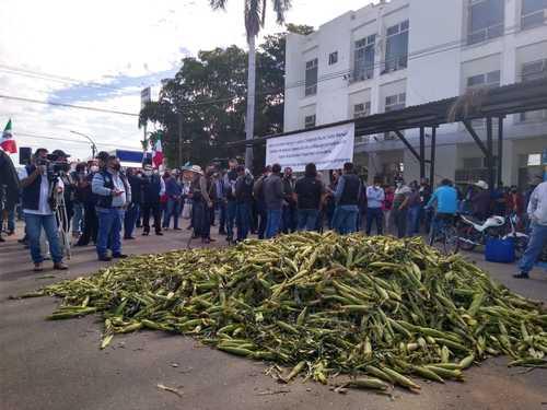 Campesinos tiraron ayer parte de sus cosechas de maíz para obstruir la circulación frente a la delegación de la Secretaría de Agricultura y Desarrollo Rural en el municipio de Cajeme, Sonora, a fin de exigir apoyos del gobierno federal y el pago de adeudos.