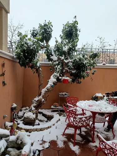 El frente frío número 35 y una masa de aire polar provocaron nevadas y temperaturas hasta de 10 grados centígrados bajo cero en Ciudad Juárez, Chihuahua, lo que obligó al cierre de carreteras y del aeropuerto de esa localidad.