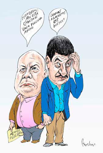 HAY CABEZAS DE GANADO