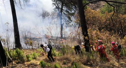 El incendio que se inició el domingo pasado en el parque nacional El Tepozteco, en Tepoztlán, Morelos ya fue controlado y sofocado en 90 por ciento; las autoridades ambientales reportaron que el fuego consumió 350 hectáreas de pinos y encinos.