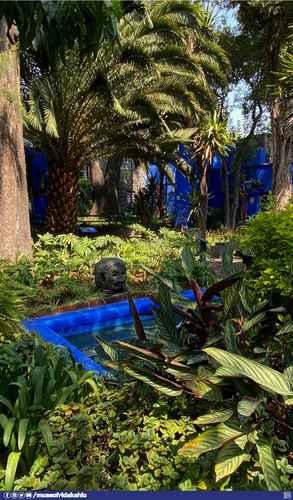 La curadora Adriana Zavala ofrecerá hoy una conferencia virtual sobre la Casa Azul, hogar y ahora museo de Frida Kahlo.