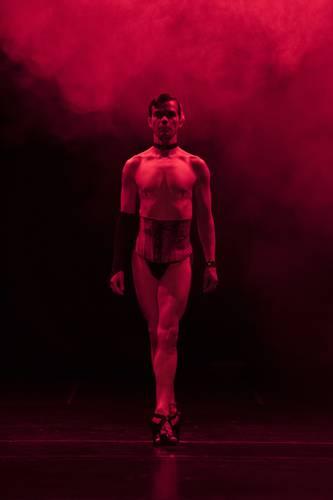 Nueve compañías participarán en el festival organizado por el fundador de La Cebra Danza Gay.