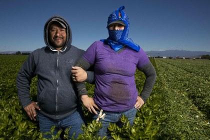 AFP Los Inmortales en los campos de cultivo.jpg